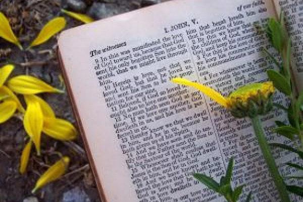 Letzter Sonntag des Kirchenjahres / Ewigkeitssonntag - Der Jüngste Tag