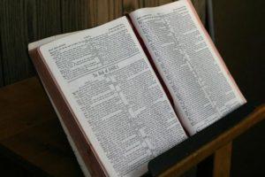 15. Sonntag nach Trinitatis (Vertrauen und Fürsorge)