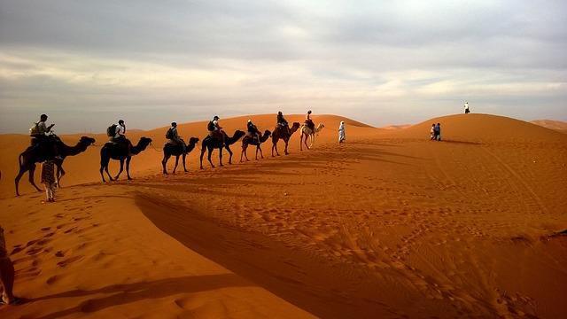 Wüstenwanderung1 Wüstenwanderung