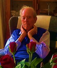 Stillfried Niebuhr